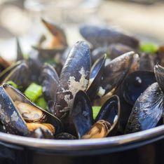 De la mer du Nord à la Méditerranée, les moules ponctuent un parfait roadtrip gourmand !