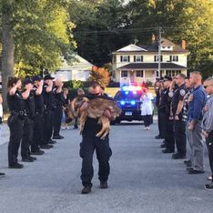 So bewegend nehmen diese Polizisten Abschied von ihrem todkranken Polizeihund