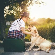 ¡No sin mi mascota! 7 destinos clave para viajar con animales
