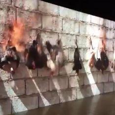 Lyon, une exposition montre une vidéo de poulets brûlés vifs et fait polémique