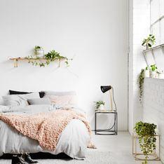 Ces plantes d'intérieur que l'on peut laisser dans une chambre (photos)