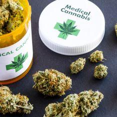 Le cannabis médical pourrait bientôt être autorisé en France