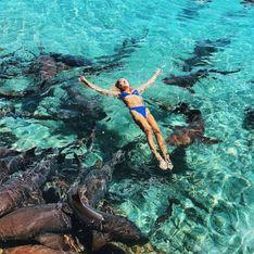 Elle prend la pose pour Instagram, et se fait attaquer par un requin (Photos)