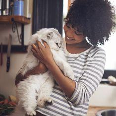 Cette entreprise instaure un congé maternité aux salariés qui adoptent un animal