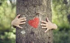 Ecolokid : Ces petits gestes pour apprendre aux enfants à protéger la planète
