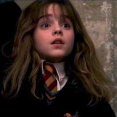 Une université propose des cours de droit Harry Potter et ça a l'air passionnant !