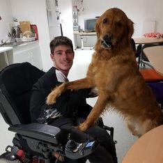 Handicapé, il est prié de quitter le magasin avec son chien d'assistance... Sa réponse est parfaite ! (Vidéo)