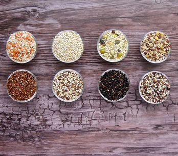 Comment bien cuire le quinoa ?