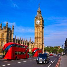 A Londres, un ours en peluche alerte sur la qualité de l'air