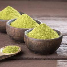 Todas las propiedades y beneficios de la Moringa para tu salud
