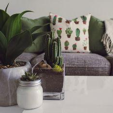 5 idee economiche per rinnovare il tuo salotto