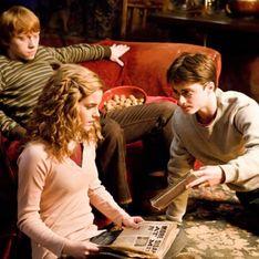 Des livres Harry Potter et Twilight brûlés par des prêtres en Pologne