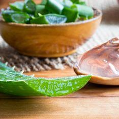 Digestion difficile, comment l'aloe vera peut t'aider ?