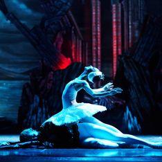 Le Lac des cygnes : retour sur l'histoire d'un mythe