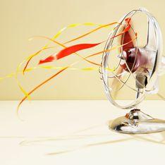 Chaleur : notre comparatif des 5 meilleurs ventilateurs pour mieux vivre les fortes températures