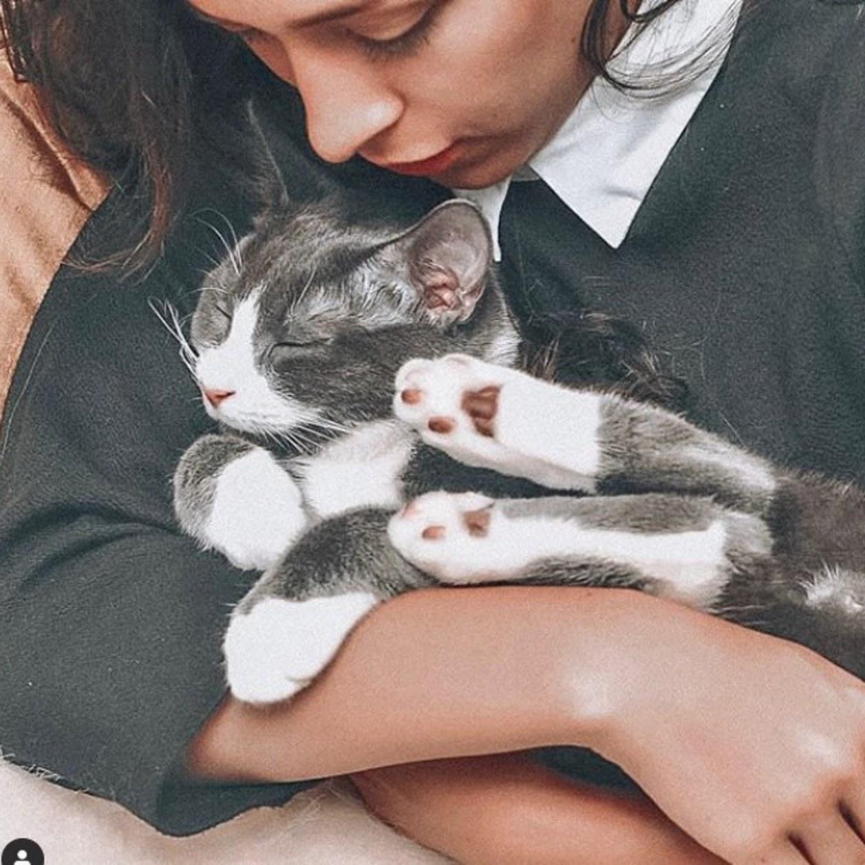 Une influenceuse raconte comment son chat lui a permis de gagner de l'argent sur Instagram