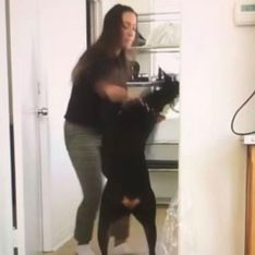 Une Youtubeuse se trompe et dévoile une vidéo d'elle en train de battre son chien