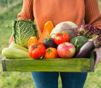 Alimentation : comment bien acheter local?