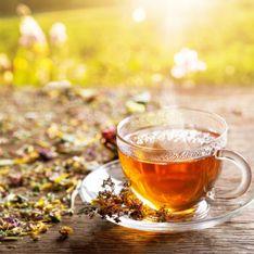 Tisane rilassanti: i migliori rimedi naturali contro lo stress