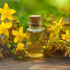 Olio di iperico: usi e proprietà benefiche