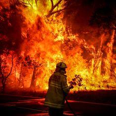 En Australie, le méga-feu qui ravage le pays depuis trois mois enfin maîtrisé