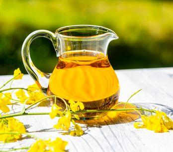 ¿Es hora de recuperar el aceite de colza? Estas son sus propiedades
