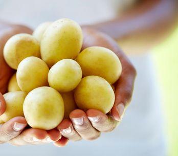 Stockez vos pommes de terre correctement pour les conserver plus longtemps