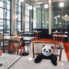 Des peluches de pandas pour faire respecter les règles sanitaires