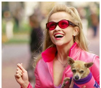 On en sait plus sur la suite de La revanche d'une blonde et les nouvelles sont bonnes !