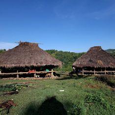 Une île en Indonésie pratique encore les captures d'épouse !