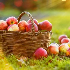 Proprietà della mela: i benefici del frutto della salute per eccellenza