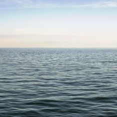 Emporté au large dans la mer, cet enfant de 10 ans a survécu grâce à un documentaire
