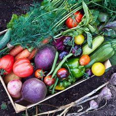 Calorie delle verdure: quali scegliere per non appesantirsi