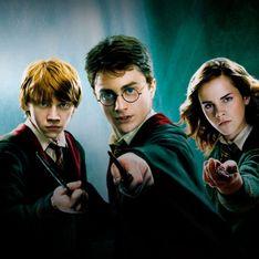Harry Potter : un acteur de la saga va jouer dans la prochaine saison de Sex Education, sur Netflix
