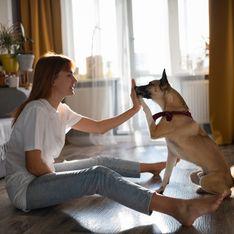 Paura dei cani: cause e rimedi per la cinofobia del bambino e dell'adulto