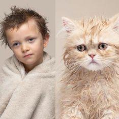Les chats ressemblent-ils à leurs propriétaires ? Ces photos le prouvent