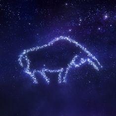 Ascendente Toro: personalità e principali caratteristiche