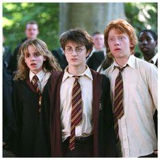 Harry Potter : le casting fête ses retrouvailles