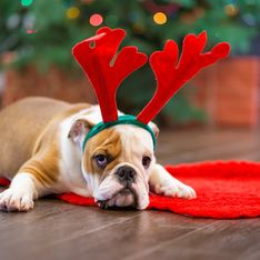 Cadeaux de Noël : les meilleurs sites pour revendre ses cadeaux ratés