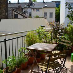 Balkonkästen bepflanzen: Tipps & Ideen für die Blütenpracht zu jeder Jahreszeit