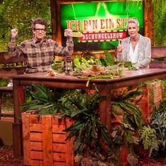 Kritik für die Dschungelshow: Das sagen Sonja Zietlow und Daniel Hartwich