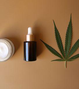 Le cannabis de bien-être sauveur de l'économie française ?