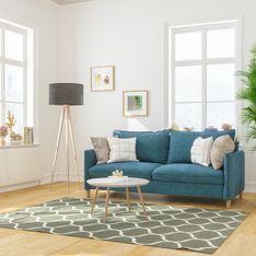 Piante da interno alte: le più maestose per arredare la tua casa