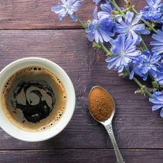 Caffè di cicoria: la bevanda bio ottenuta dall'infusione a caldo della polvere della radice di cicoria tostata