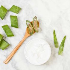 Aloe Vera Creme: Natürliche Pflege für deine Haut