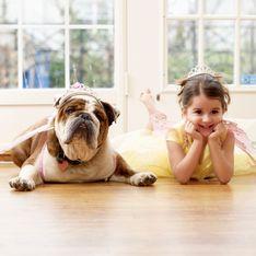Cani, gatti o pesci rossi: quali sono gli animali domestici più adatti per i bambini?