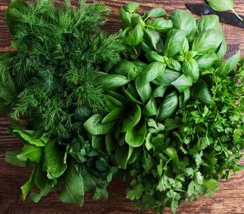 5 astuces de pro pour mieux conserver vos herbes aromatiques
