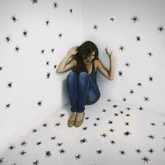 Rêver d'araignée, mauvais présage ou bonne nouvelle ?