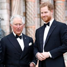 Nach Prinz Harrys Schock-Interview: So reagiert Prinz Charles