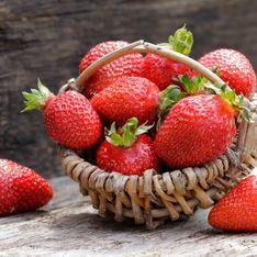 Nos astuces infaillibles pour choisir des fraises qui ont du goût